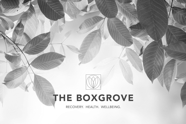 Boxgrove 13